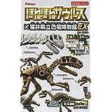 ほねほねザウルス×福井県立恐竜博物館EX 8個入 食玩・ガム(ほねほねザウルス)