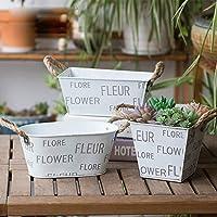 植木鉢 3農村スタイルアイアンバケツフラワーポットクリエイティブアートフラワーポットガーデンのセット小さな花植物コンテナグレート 多肉植物 サボテン鉢 (Color : White, Size : 3 set)