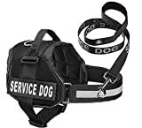 Service Dog Vest With Hook and Loop Straps & Matching Service Dog Leash Set - Harnesses From XXS to XXL - Service Dog Harness Features Reflective Patch and Comfortable Mesh Design (Black, large)