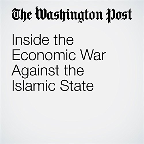 Inside the Economic War Against the Islamic State audiobook cover art