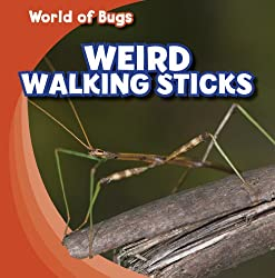 Weird Walking Sticks (World of Bugs)