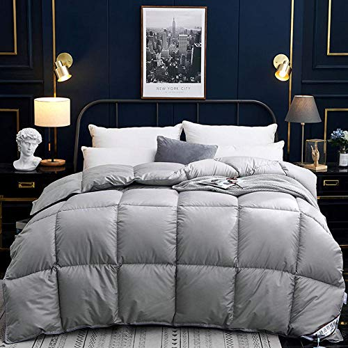 CHOU DAN 95 White Goose Down Winter Quilt Single Double Thicken Warm Spring and Autumn Quilt-200x230cm 4000g_gray