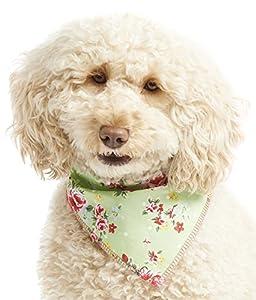 Animal domestique TOUTOU Boutique vintage Bandana pour chien,