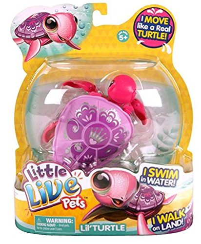 Little Live Pets- S2 Schildkröte Einzelpackung- Prinzessinnenschildkröte Sheila