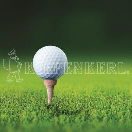 Kiepenkerl 4000159623767 RSM 4.3 Golfrasen Abschlag 10 kg