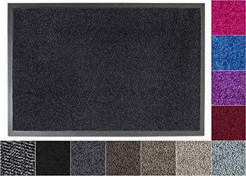 Jan Max Schmutzfangmatte - 8 Farben - Fußmatte mit 2900g/m2 PP Twisted Heatset Faser - 2,4l/m2 Feuchtigkeitsaufnahme - Sauberlaufmatte anthrazit 60 x 80 cm Anthrazit