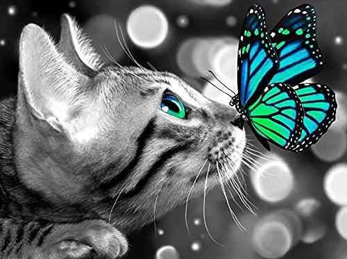 GJSZZO Diamant Painting Bilder,Katze und Schmetterling Daiments Painting Mit Diamond Painting Zubehör,5D Diamant Painting Für Indie Aesthetic Room Decor(Katze 30x40CM)