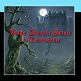 A Gothic Acoustic Salute To Evanescence