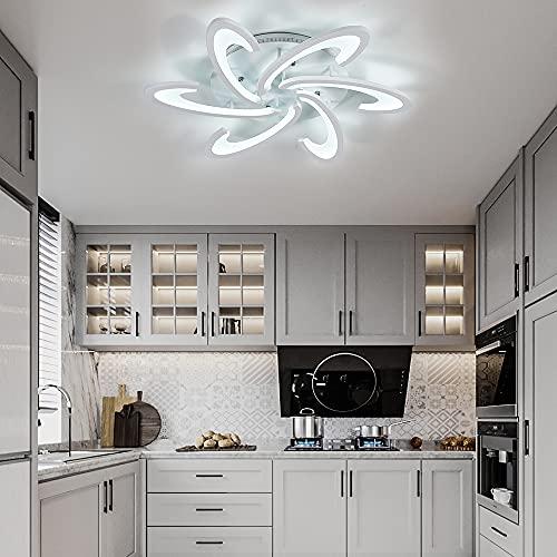 FUKEA Living Room Lights, Led Ceiling Lights, Flush Mount Acrylic Fancy...