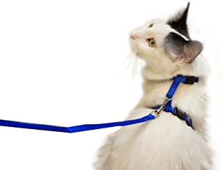 Juvale Cat Harness – Small Pet Harness Leash Adjustable Nylon Rope Strap Kitty Harness and Leash Collar 4.5 Inches, for Cats and Small Dogs - 55 Inches Long