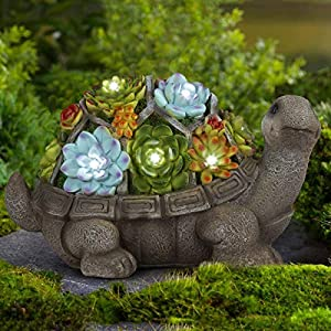 Outdoor turtle statue with solar LED succulents