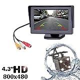 Leepesx 4.3 pulgadas TFT LCD Vista posterior del coche Monitor de respaldo Cámara CCD Sensor Estacionamiento Videocámara LED Cámara de visión nocturna