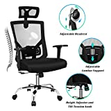 VANSPACE Ergonomic Office Chair,High Back Mesh Chair, Executive Swivel Computer Chair Desk Chair with Adjustable Headrest, Armrest, Lumbar Support and Thick Seat Cushion 330lb