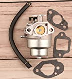 ECOVET Carburetor Carb for Ryobi 2800psi Pressure Washer with Honda GCV 160 Engine