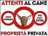 SNOGGHY Targa Cartello ATTENTI al Cane Chihuahua (30 X 20 CM)