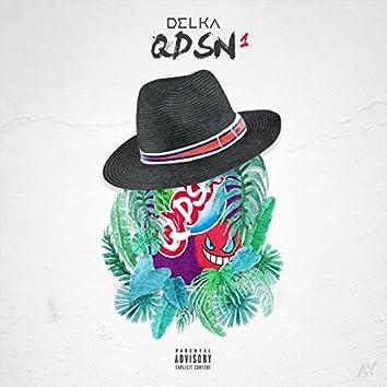 Qdsn1