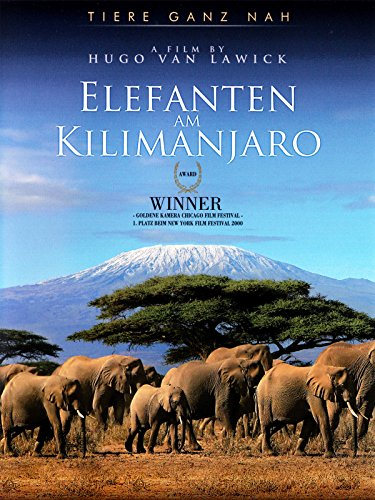 Elefanten am Kilimanjaro