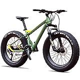 DJYD 27-Gang-Mountainbikes, Profi 26 Zoll Adult Fat Tire Hardtail Mountainbike, Alurahmen Vorderachsfederung All Terrain Fahrrad, B FDWFN