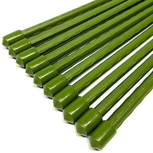 HAC24 10er Set Pflanzstäbe Rankhilfe 120cm Pflanzenstäbe Pflanzen Stab Stäbe Pflanzenstütze Pflanzhilfe Rankstäbe