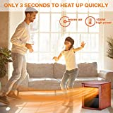 Trustech Electric Space Heater
