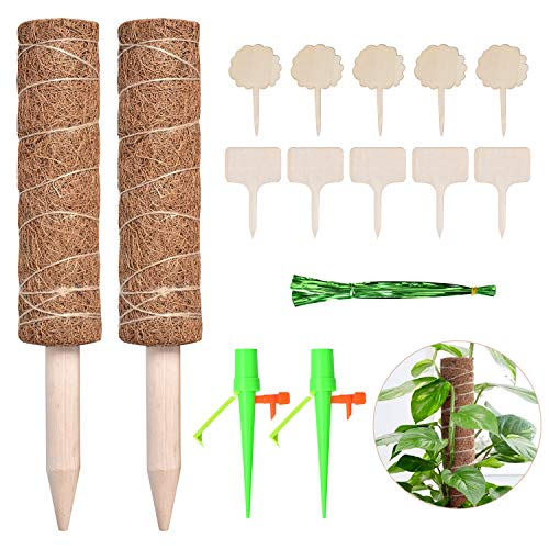 Queta Varilla para plantas de coco, tutor, vara para flores, varilla de coco, varilla de coco, 2 unidades de 30 cm, varilla de coco, con 10 carteles para plantas