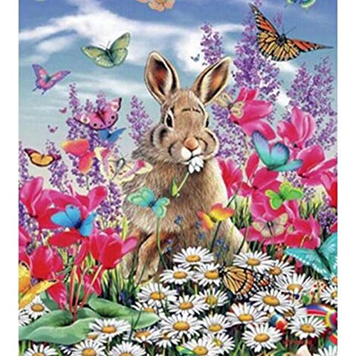DIY Paint by Diamond Kits for Adults, Kids, Home Room Office Decoration. Gift Presents for Her Him Rabbit and Butterfly 11.8x15.7 in by Megei