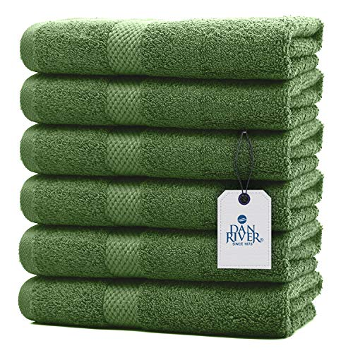 DAN RIVER 100% Cotton Hand Towel Set of 6  Ultra Soft Bathroom Hand Towels  Salon Towel  Absorbent  Extra Large Hand Towel  Spa Hand Towel  Gym Hand Towel Green Hand Towel  Hand Towel 16x28 In 600 GSM