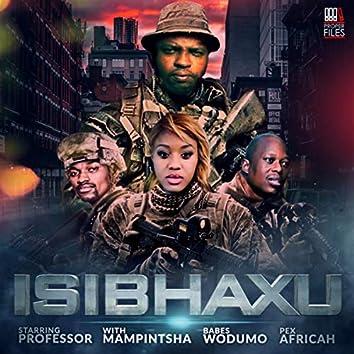 Isibhaxu