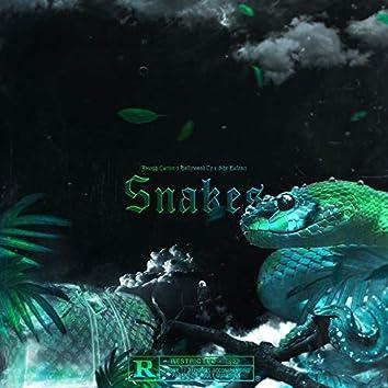 Snakes (feat. Hollywood Ty, Shy Balenci)