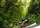 Wald Poster XXL - 118,8 x 84 cm | Wasserfall im Regenwald |