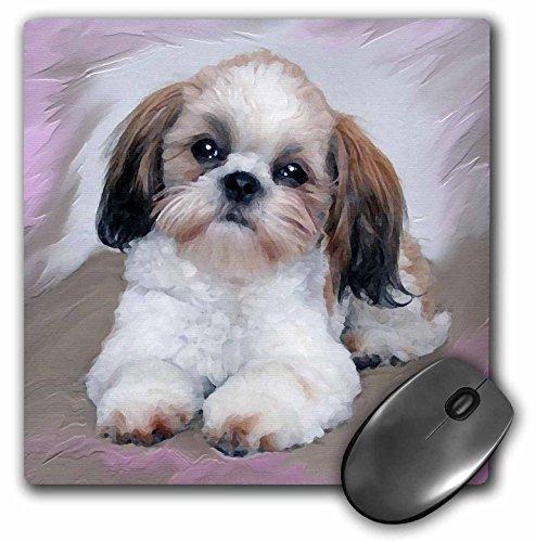 3dRose LLC 8 x 8 x 0.25 Inches Mouse Pad, Shih Tzu Puppy (mp_4807_1)