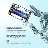 Zoom IMG-1 dogfish msata ssd 240gb internal