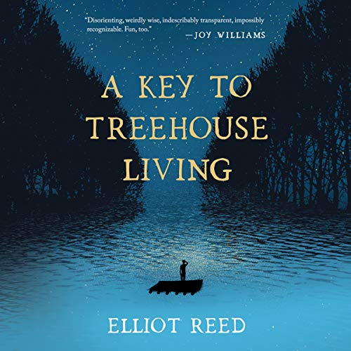 A Key to Treehouse Living audiobook cover art