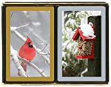 Congress Red Cardinal Playing Cards - Jumbo Index (Pack of 2)