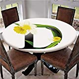 """Elastic Edged Polyester Fitted Table Cover,Black D Silhouette Entangled with Growing Daffodils Artistic with Flowers Decorative,Fits up 45""""-56"""" Diameter Tables,The Ultimate Protection for Your Table,Y"""