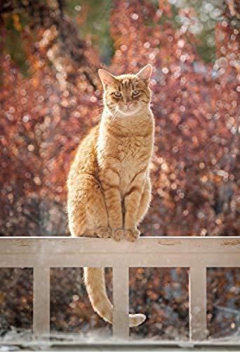 Houten puzzel 500 stuks volwassen klassieke 3D puzzel kat op hek Diy moderne kunst Home Decor unieke Gift-53X38Cm