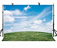 ST 10X 7ft緑の草原写真バックドロップホワイト雲とブルースカイ背景写真ブース画面バックドロップまたはYoutube背景Props st170055