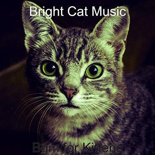 Bright Cat Music
