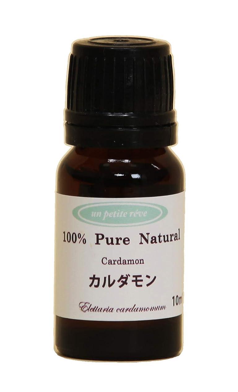 コマンド姓思慮のないカルダモン 10ml 100%天然アロマエッセンシャルオイル(精油)