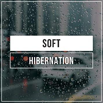 Soft Hibernation, Vol. 2