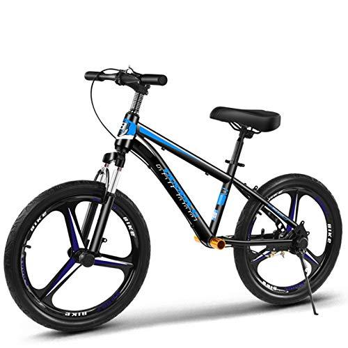 Bicicleta sin pedales Bici Bicicleta de Equilibrio sin Pedal para Adultos con Frenos de Disco - Bicicleta de neumáticos para autocar/papá/mamá de 50 cm (20 Pulgadas), Regalo de cumpleaños