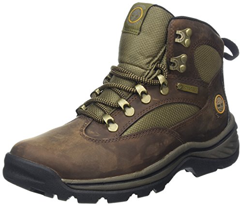 Timberland Damen Chocorua Trail Goretex Chukka Boots, Braun (Dark Brown/Green), 41 EU