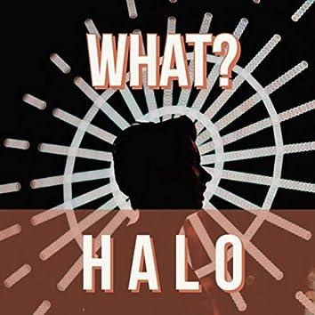 H A L O
