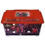 Caja de plástico transparente, asa de transporte, tanque de acuario, caja de terrario | peces pequeños, invertebrados, animales, reptiles, anfibios, plantas acuáticas e insectos, azul 1.2L