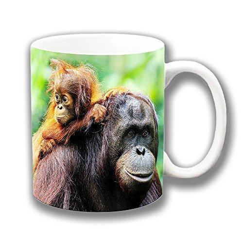 Cushions Corner Orangutan Y Bebé