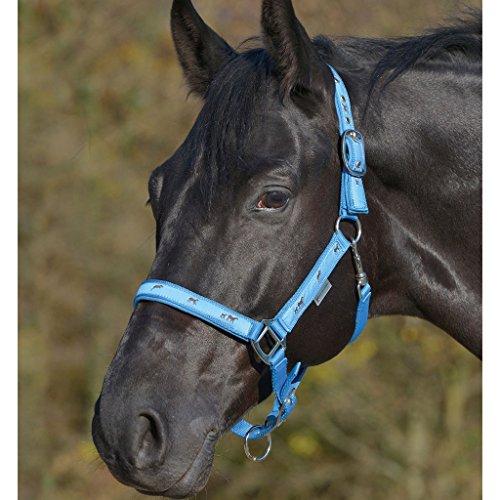 WALDHAUSEN Halfter Pferdemotiv, azurblau, Pony, azurblau, Pony