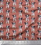 Soimoi Orange Seide Stoff Bogen und Boston-Terrier Hund