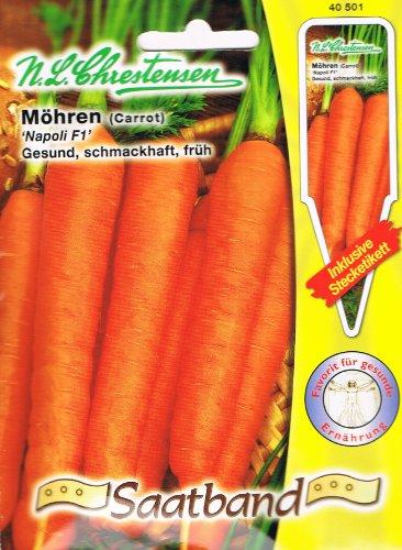 Möhren Möhre Napoli F1 Saatband früh Karotten