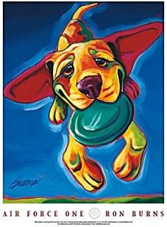 Air Force One by Ron Burns, Dog Playing Catch Art Print Poster (Overall Size: 18x24) (Image Size: 16x20)
