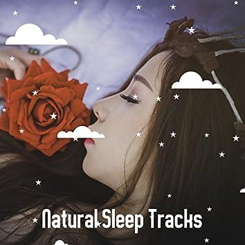 Natural Sleep Tracks